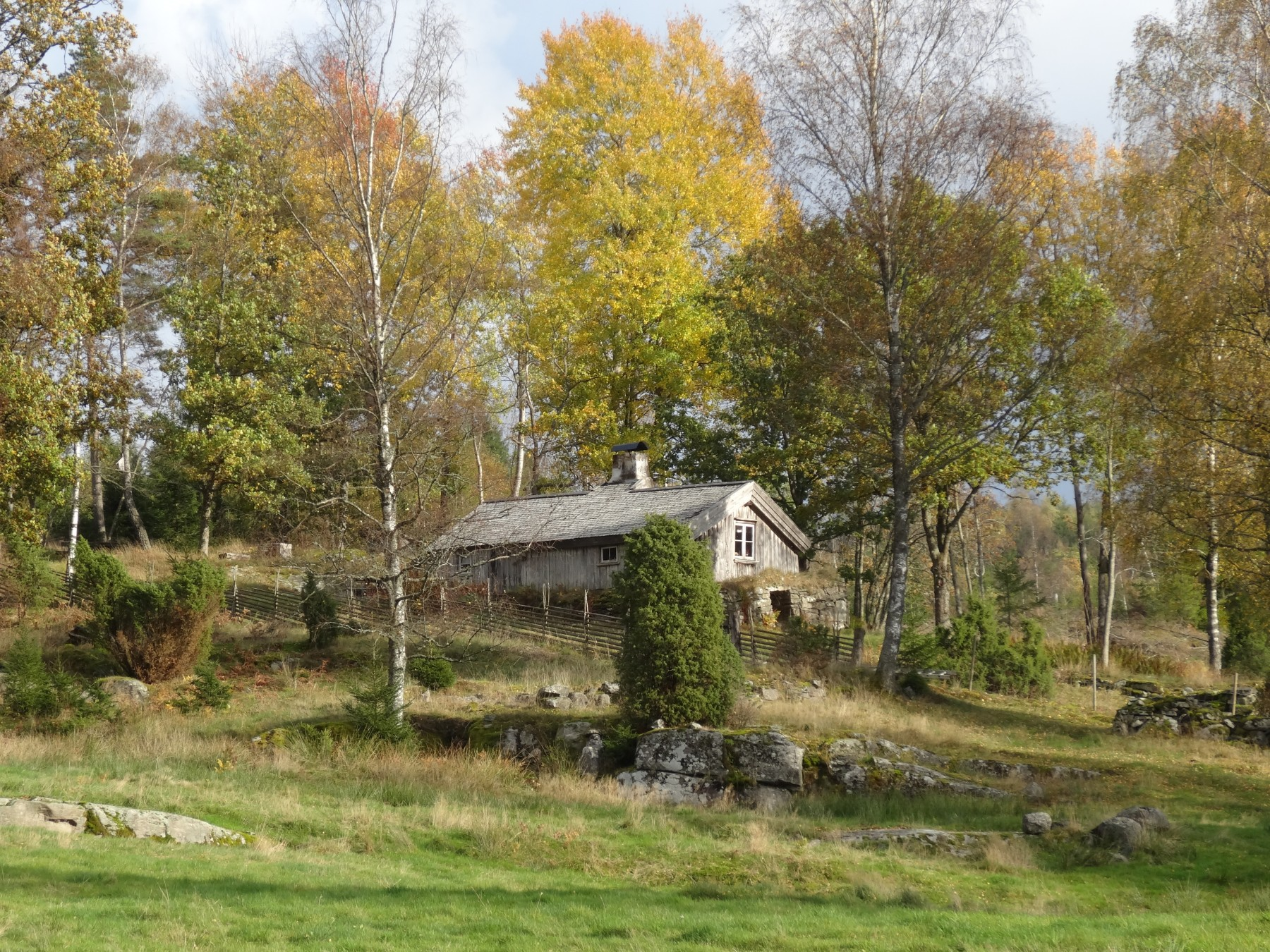 Torpet Berntssons, hösten 2014 (3)